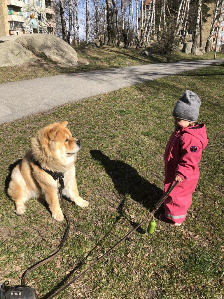 Barn och hundar